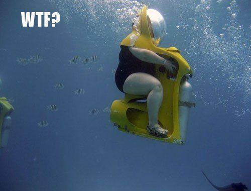 plongée sous-marine pour flemmard, publiée le 25 Janvier 2013