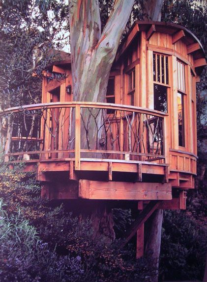 Tree Houses with the natural wood color that God made is more rustic.