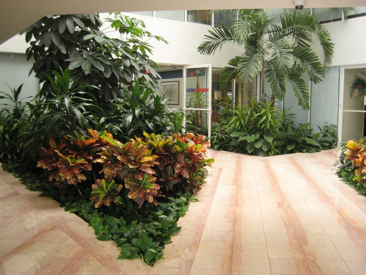 1000 Images About Plant Scapes In Atriums On Pinterest West Palm Beach Lush And Office Buildings