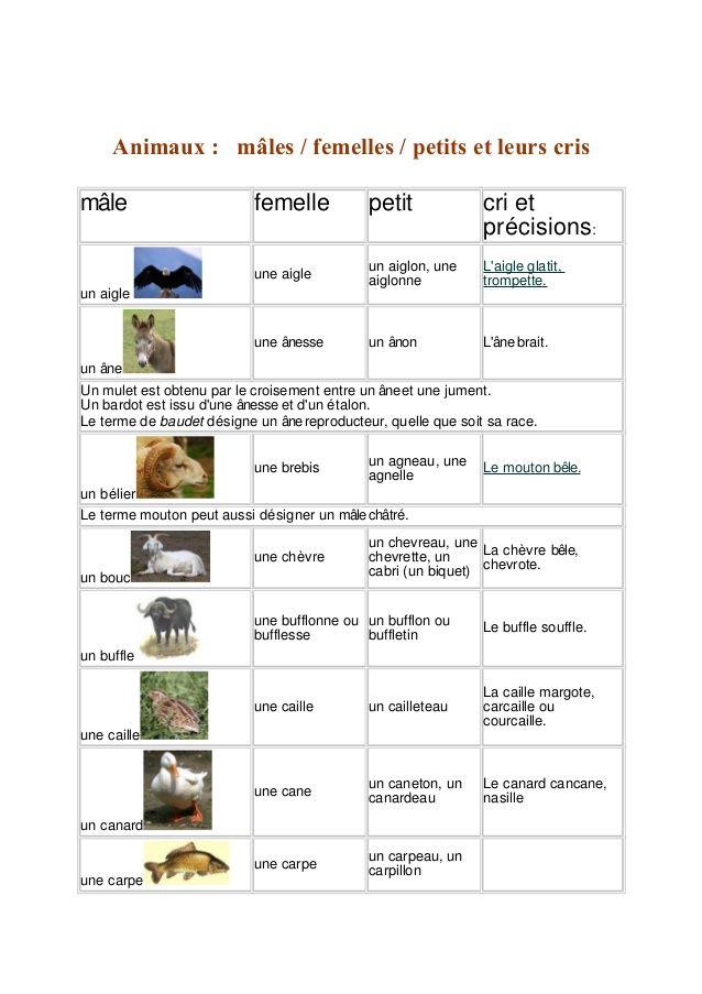 Souvent Les 25 meilleures idées de la catégorie Cri animaux sur Pinterest  HX36