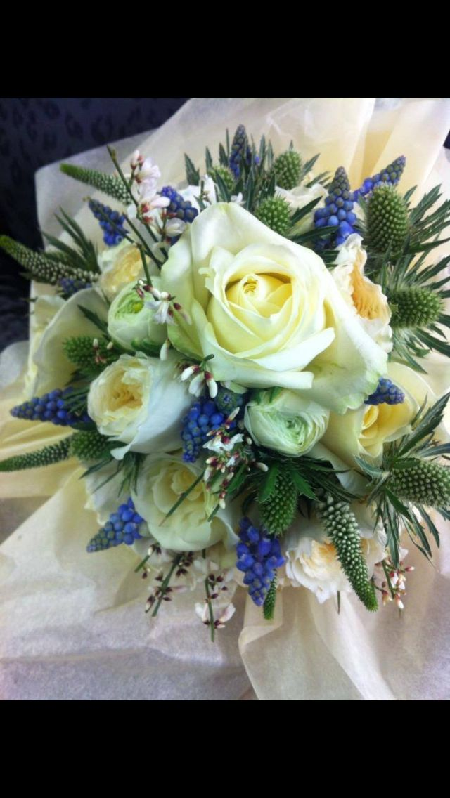 A bridal bouquet with a cool fresh crisp tone- Beautiful display of blue muscari and ivory; rose, ranunculus, eryngium and Veronica - #avalancherose #bluemuscari #ivoryranunculus #ivoryandblue #pennyjohnsonflowers