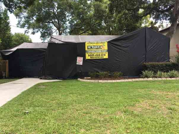 Tenting A House For Termites