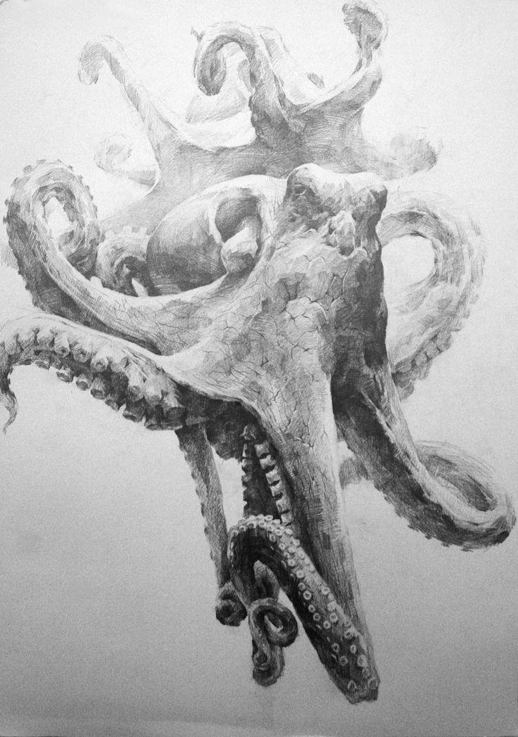 Octopus1 by indiart3612 on DeviantArt