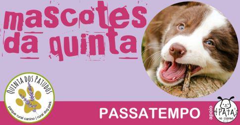 """Passatempo """"Mascotes da Quinta"""""""
