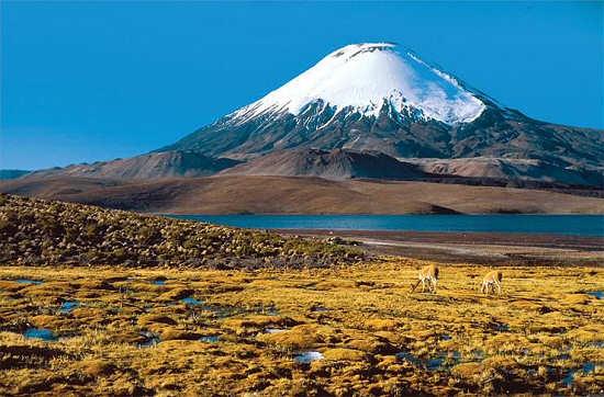Lago Chungará y Volcán Parinacota (Arica, Chile)
