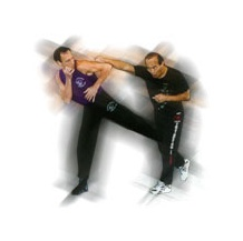 Princeton Academy of Martial Arts, New Jersey - Jun Fan Gung Fu/Kung Fu, Jeet Kune Do (JKD), Muay Thai Boxing, Filipino Kali Eskrima, Indonesian Pencak Silat, Mixed Martial Arts (MMA), Savate, Kickboxing, Boxing, Karate Kids, NJ, DVDs, Instruction, Equipment