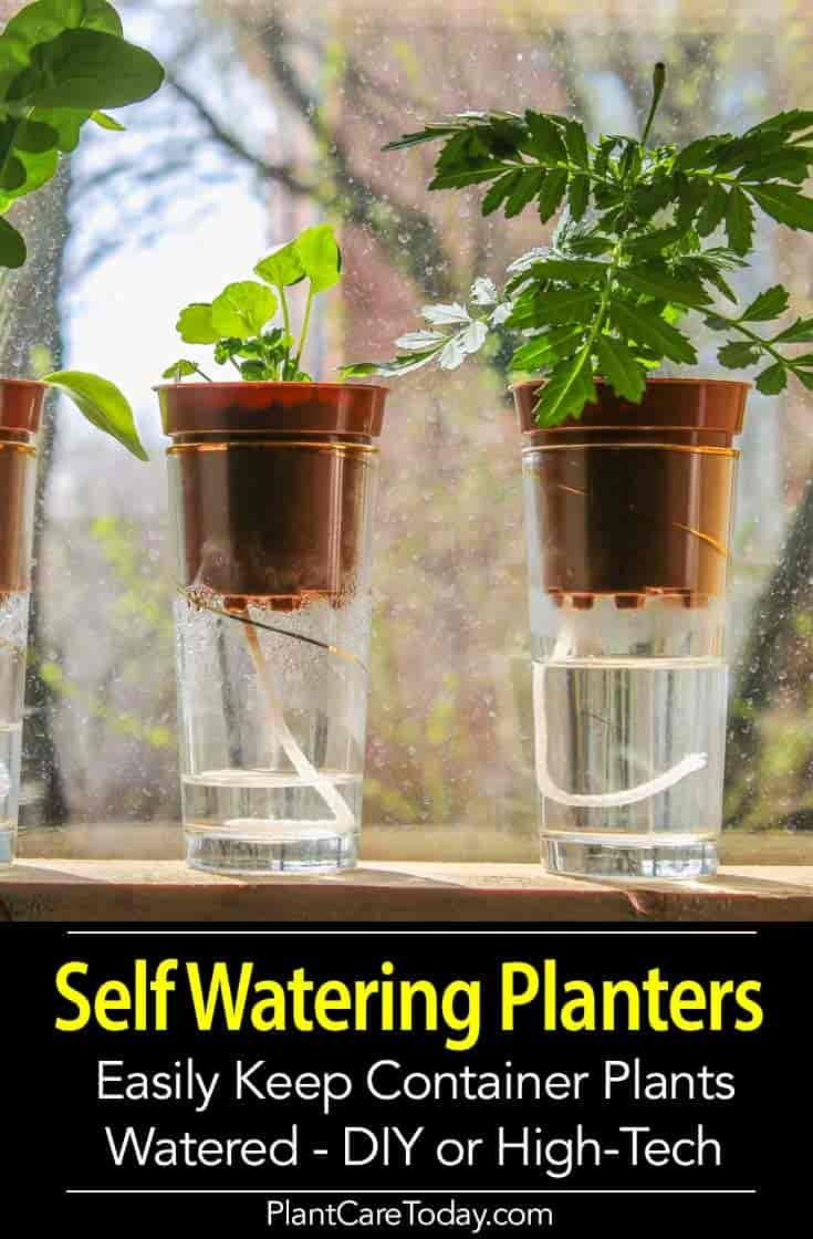 Different smart self-watering planters exist for a wide range of watering needs….
