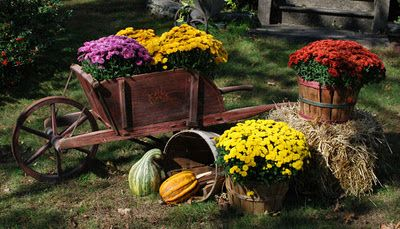 My Primitive Heart-Decorating Ideas & more: Front Yard Fall Display
