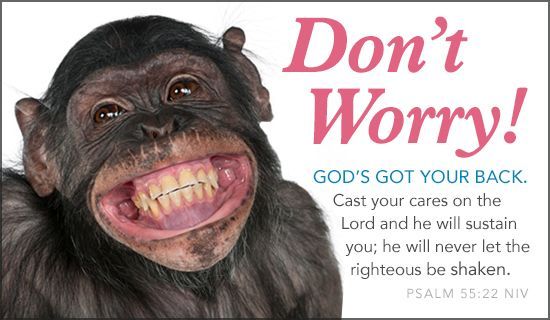 Free Don't Worry eCard - eMail Free Personalized Animals Cards Online