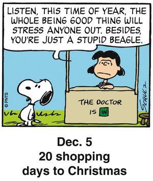 Santa is watching. Peanuts Holiday Countdown on GoComics.com #Holidays #Christmas #Santa