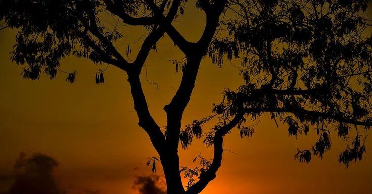 Amanhecer deixa o céu colorido na cidade de São José dos Campos, no Vale do Paraíba (SP)