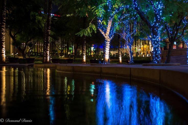There is something about light that shines in darkness. Darkness can only be present in the absence of light. So our eyes will always be attracted to it as mine were to this beautiful light display in the middle of downtown Phoenix. Enjoy!