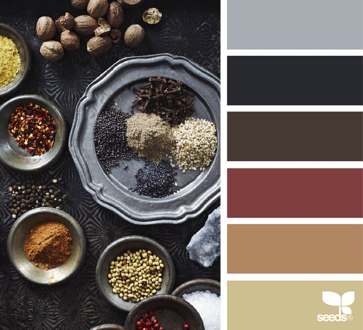 { Color Seasons } image via: @_kate_lewis | featured in the seasonal Color Atlas | Design Seeds + Color Atlas by Archroma®