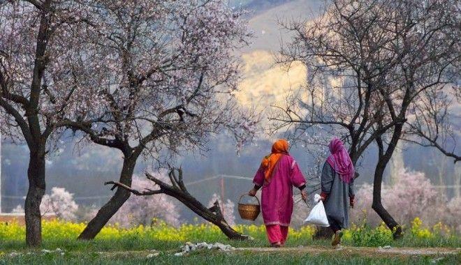 Kashmir, India | 1,000,000 Places