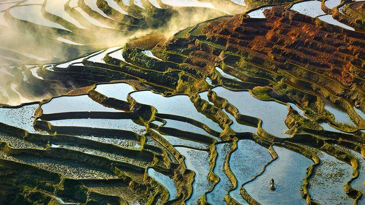 China's Stunning Terraced Rice Paddies Woke Up Like This | WIRED