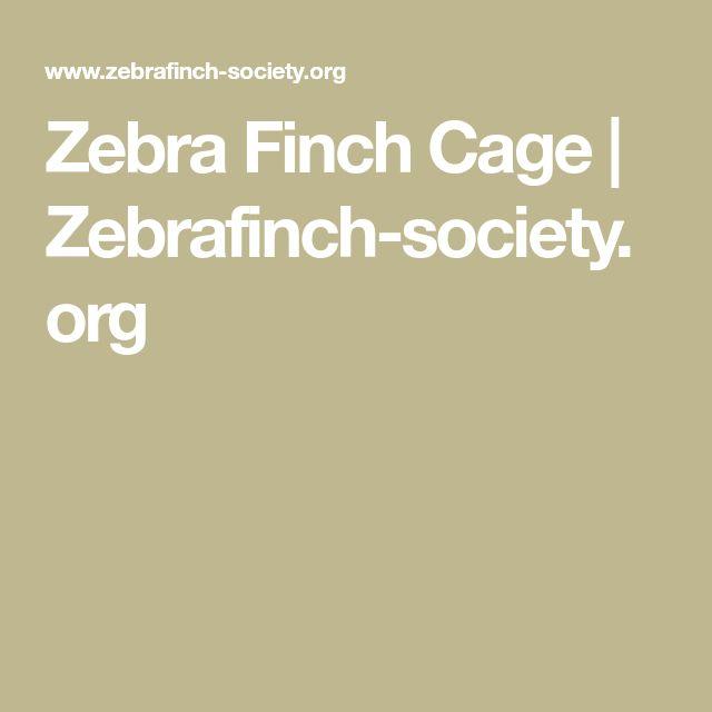 Zebra Finch Cage | Zebrafinch-society.org