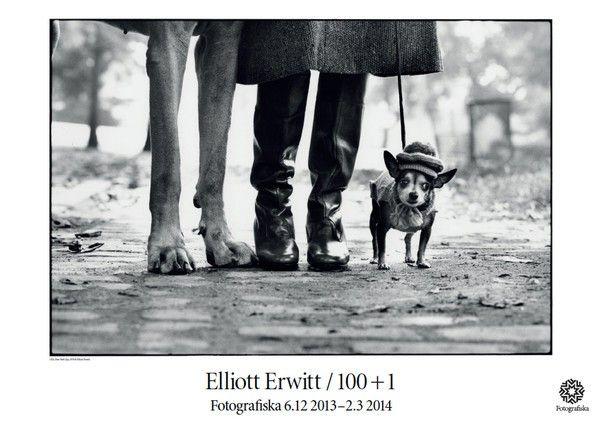 Affisch Elliott Erwitt 179 - Affischer