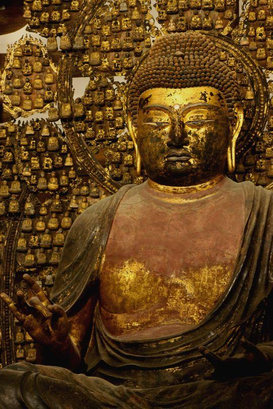 盧舎那仏坐像-rusyanabutuzazou-(Vairocana) One person of the Buddha. 唐招提寺(toushoudaiji)