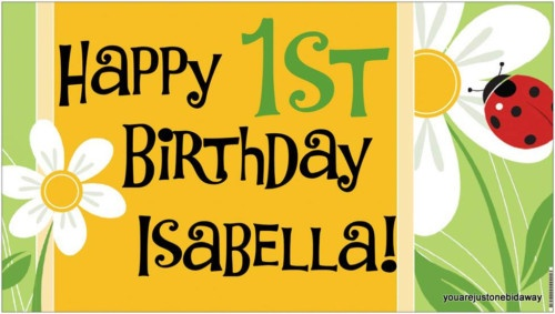 Custom Ladybug Butterfly Birthday Party Banner Choice - A beautiful showpiece for your child's birthday and a wonderful keepsake. Dimensions: 3' x 1.6' Printed on high quality, white 10oz. vinyl, which is flexible material with a matte finish and is fade-resistant, tear-resistant, and flame-retardant. Banners are professionally printed and are shipped rolled. Your banner will never be folded, so it will have no creases. $29.95