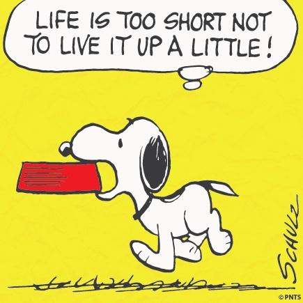 Life is too short not to live it up a little!Life, Peanut Wisdom, Peanutsprim Direction, Living, Friends Snoopy, Snoopy Peanut, Charlie Brown, Charli Browniest, Peanut Gang