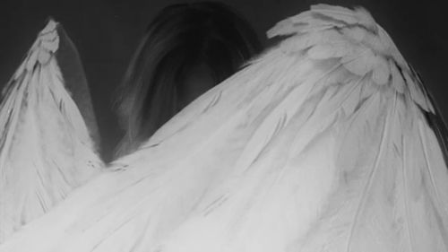 angelkin art | Tumblr | Wings | Angel aesthetic, Angels, demons, Angel