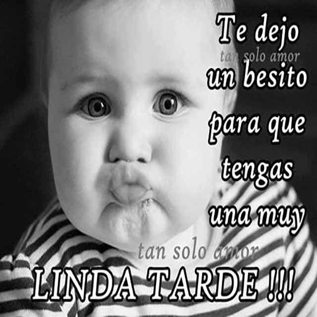 Imagenes De Buenas Tardes Mi Amor Baby Memes Dia Quote Humor