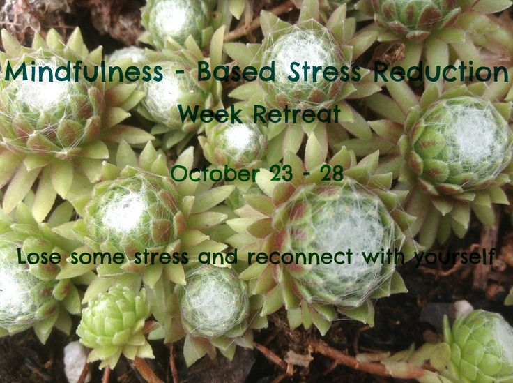 Mindfulness - Based Stress Reduction (MBSR) Week Retreat October 23 - 28, 2016