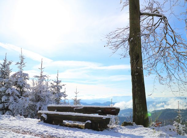 Es schneit! Im Harz ist hat es schon geschneit und in diesen Teilen Deutschland soll morgen der erste Schnee fallen.