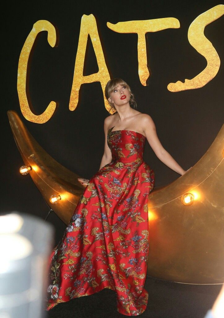 Taylor Swift Cats Movie Taylor Swift Style Long Live Taylor Swift Taylor Swift Cat
