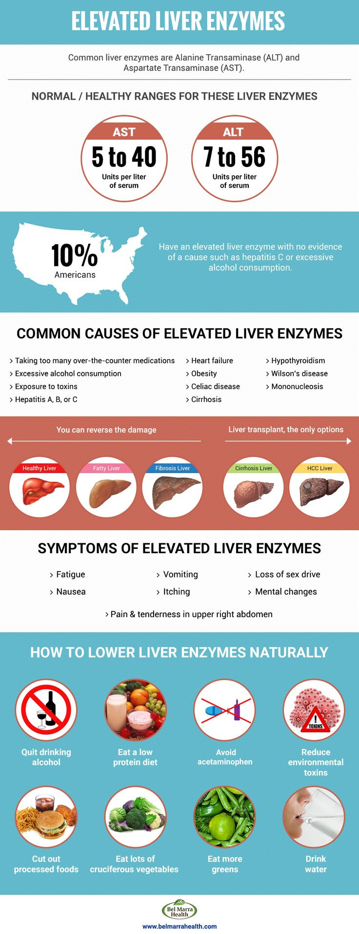 Understanding Elevated Liver Enzymes Related Reading: Elevated liver enzymes: Causes, symptoms, and treatment Elevated liver enzymes may indicate a problem with the liver. When the liver is inflamed, it releases more chemicals than normal, which can be seen in a blood test. Continue reading… Natural foods for liver repair and liver cleansing Your liver is …