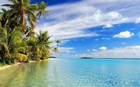 Wakker worden op een tropisch eiland