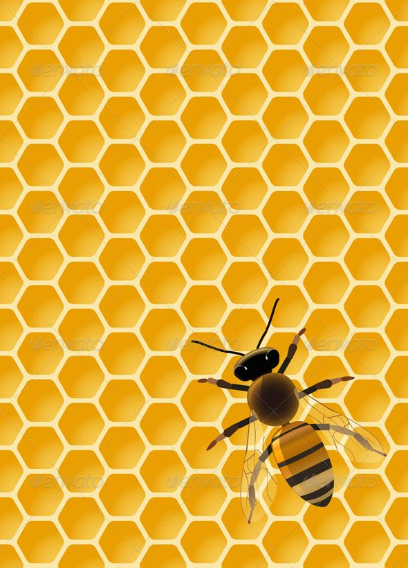 vector be on seamless honeycomb pattern eps10 vector