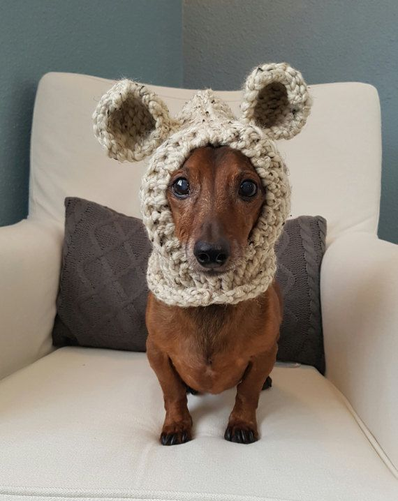 Keep your furry friend warm and cozy in this cute bear hood! Perfect for those chilly fall and winter walks or use as a costume. Handmade with chunky yarn in Oatmeal. Made for a small dog. Model is a Miniature Dachshund weighing approx. 12.5lbs. Hood is stretchy and could fit a slightly larger breed.