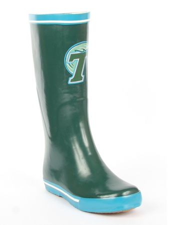 Tulane University - http://www.myfanshoes.com/collections/colleges#    So much cuter than those Pierre Part Reboks!  LOL!