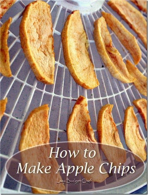 How to dry fresh apples and make apple chips in the dehydrator