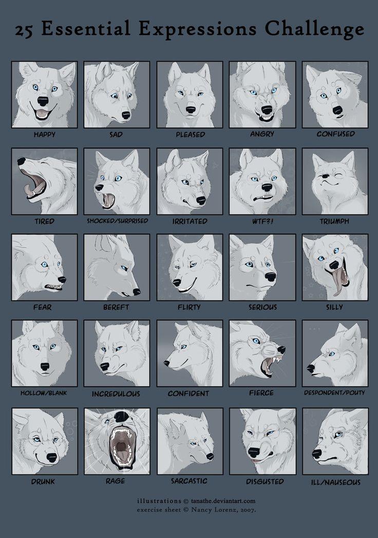 25expressions challenge - wolf by tanathe.deviantart.com on @deviantART