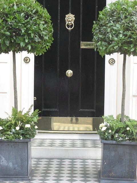 Belgravia - I love this! Glossy black door with brass hardware, zinc planters and topiaries and diamond B & W tiles
