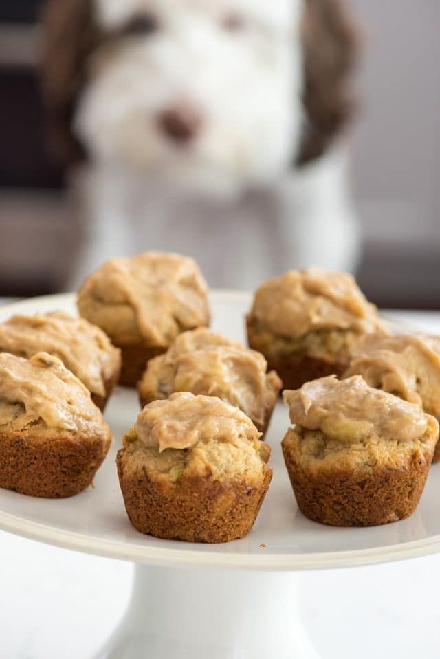 Wondrous Peanut Butter Pupcakes Recipe With Images Pet Treats Recipes Funny Birthday Cards Online Fluifree Goldxyz