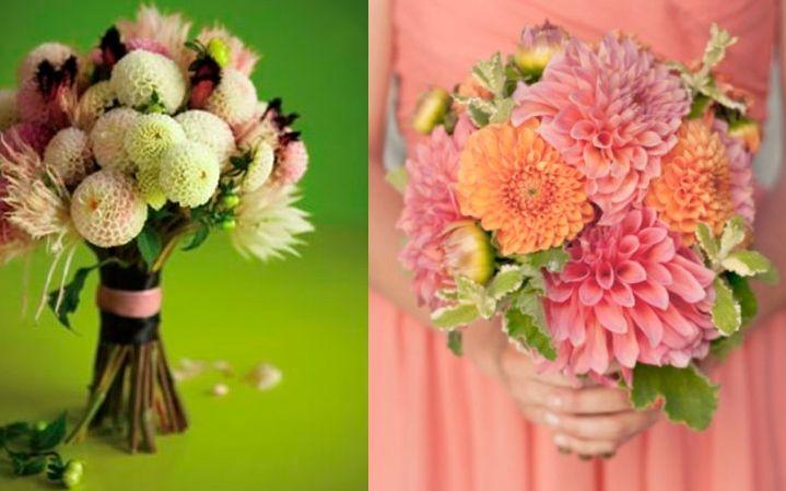 10 flores exóticas e lindas na decoração do casamento - Dália Pompom