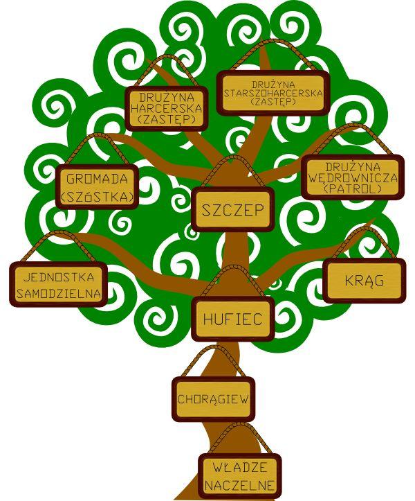 Struktura ZHP
