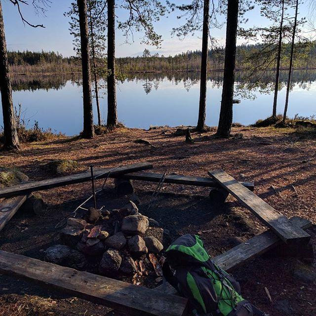 Finnish nature during spring time. Part 14 #finland #nature  #spring #beautiful #suomenkevät #luonto #luontokuva #kaunista #aamu #peilityyni #winled #winledlighting #landofthousandlakes #lake #järvi #woodland #metsä #suomi #suomenluonto #kevät #aurinko #nofilters