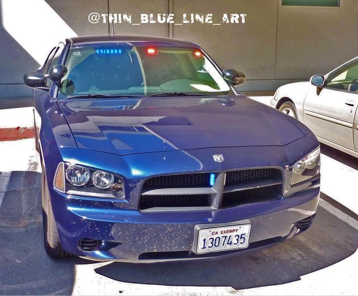Alameda County Sheriff Unmarked Charger.#ford #crownvic #crownviclife #crownviccrew #crownvictoria #crownvictoriapoliceinterceptor #cvpi #p71 #police #policecar #patrolcar #sheriff #sheriffcar #pushbar #spotlights #lightbar #federalsignal #gorhino #lawenforcement #supportlawenforcement #supportourlawenforcement #backtheblue #thinblueline #thinbluelineart #ford #fordtaurus #fordinterceptor #fordtauruspolice #california #cali by thin_blue_line_art