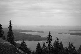 Koli, Finland 24.7.2013  CC BY Tiina M Niskanen