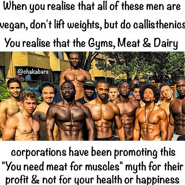 Show them this when they chat sh*t, also tell them to come work out with us, we aren't hard to find :) #spartanfam #famfoods Haters who have never tried a plant based diet & strict callisthenics will make excuses, say it's genetics... But f*ck the haters.