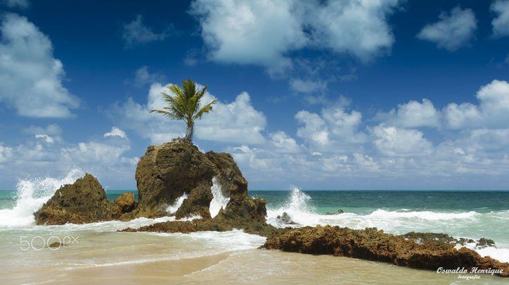 Praia de Tambaba - Praia de Tambaba, no Estado da Paraíba. Um grande abraço a todos! Oswaldo Henrique.