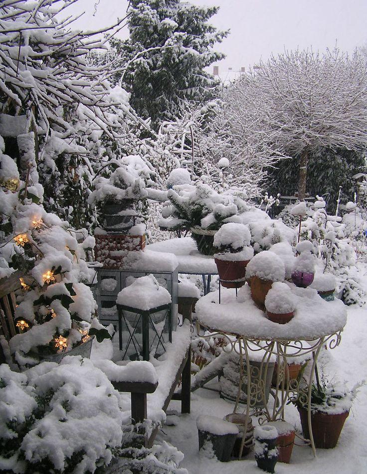 Winter Gardening Tips from www.thegardenglove.com. #chapelhill #chapelhillgardening #wintergardening