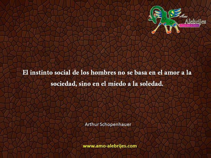 Frases celebres Arthur Schopenhauer 14