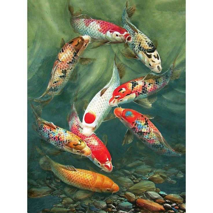 3D DIY Diamond Painting Pattern Needlework Square Full 5D Diamond embroidery Icon Animal Goldfish Set For Decor Paintings AA591 #Affiliate