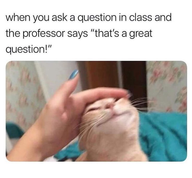 And Here I Unmute To Just Say Ok Wholesomememes Funny Relatable Memes Funny School Memes Funny Memes