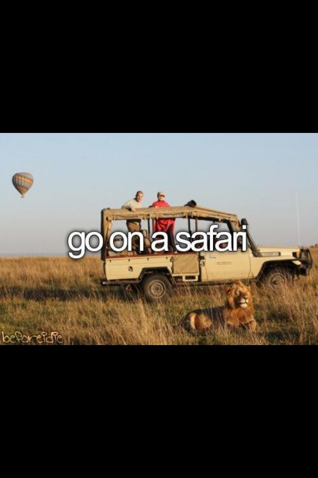 Before I die, I want to so badly go on an Africa safari. I love animals, ESPECIALLY lions! I've never been able to see one except locked up behind gates. I would love to see it roaming the land freely.